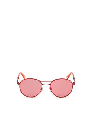 DL0265, Pink - Sunglasses